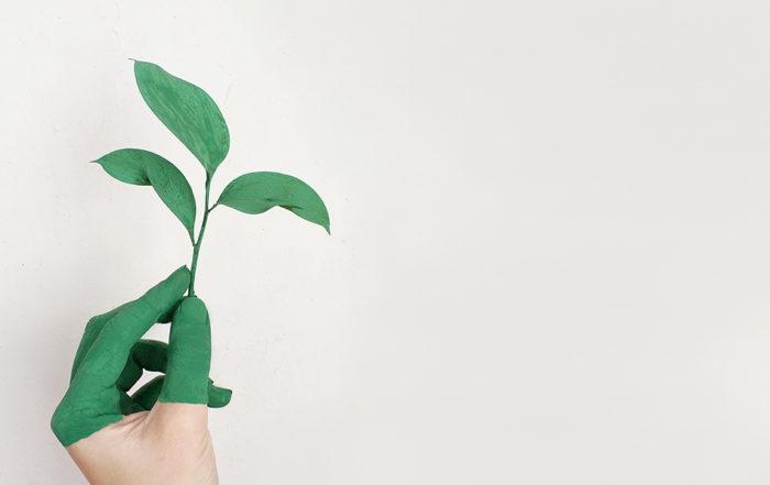 Compromiso de Responsabilidad Social Corporativa Aperitivos Snack
